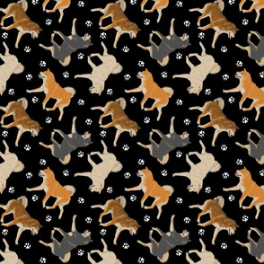 Trotting Shiba Inu and paw prints - black