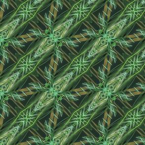Hawaiian Series-ed