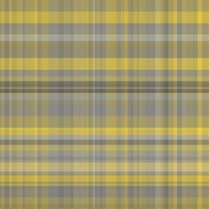 Yellow and Gray Plaid