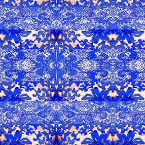 Blue_lace