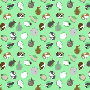 Tiny assorted rabbits - green