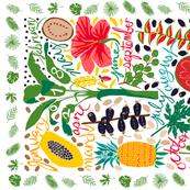 UPDATED 2018 tropical calendar