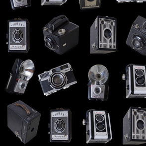 Vintage Cameras on black linen