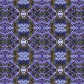 Limonium_Flower_Pattern