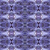 Limonium_Flower_Pattern_II