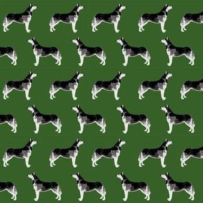 husky fabric cute huskies fabric best dog fabrics cute dogs