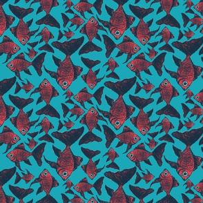 Fantail fish
