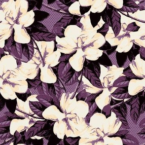 Violet Magnolia