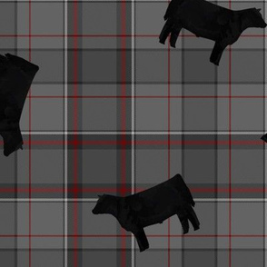 Black Steers on Grey & Red Plaid