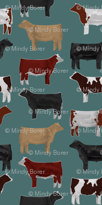 Steer Breeds on Teal