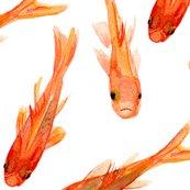 Biggoldfish_shop_thumb