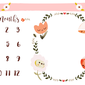 Baby Girl Milestone Blanket - Minky