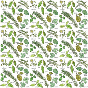 HERBS_pattern_Juzlnally