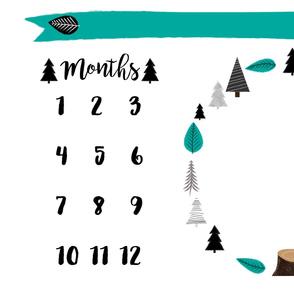 Woodland Milestone Blanket - Minky