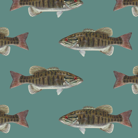 smallmouth bass on slate blue fabric by weavingmajor on Spoonflower - custom fabric