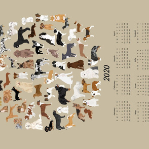 2020 Dog Breed Calendar