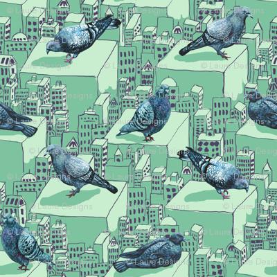 pigeon6