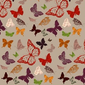 butterfly dots autumn
