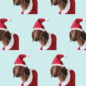 santa paws dachshund