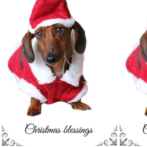 santapaws-christmas blessings