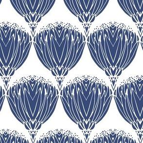 Proteas Blue