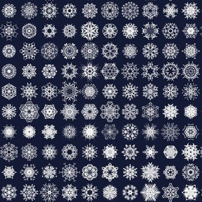 Snowflake Storm