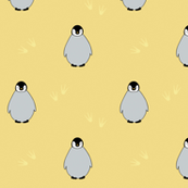 Penguins on yellow
