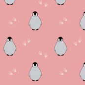 Penguins on pink