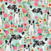 blue merle border collies cute florals design best border collie fabrics cute border collies blue merle