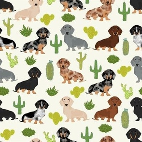 doxie cactus fabric cute dachshund fabric with cacti fun cactus fabric cute cacti design best dogs and cactus fabric