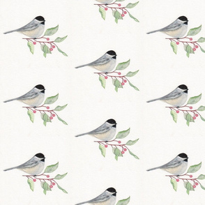 Chickadee -watercolor