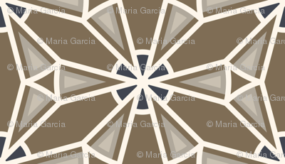 Geometric Starburst