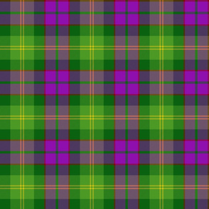 New Mexico unofficial tartan