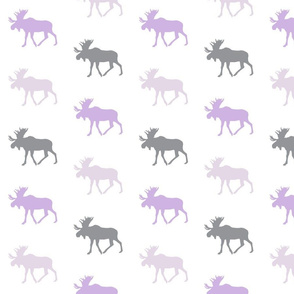 multi moose || the lilac grove collection