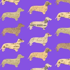 Dachshund Paperback Dogs Purple