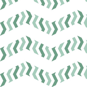 zebra chevron in mint green