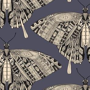 swallowtail butterfly dusk black