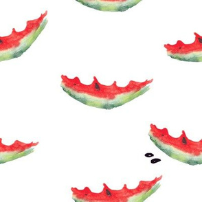 Watercolor_watermelon_15