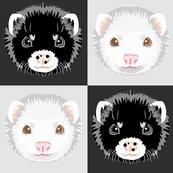 Rblack_and_white_ferret_checkerboard_shop_thumb