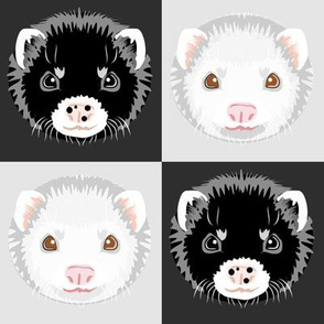 Black and White Ferret Checkerboard