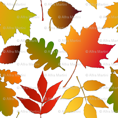 Leaf_assortment_preview