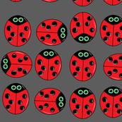ladybugsygrey
