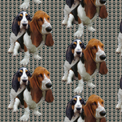 basset_fabric_design