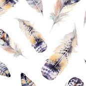 Watercolor feather boho color organic design15