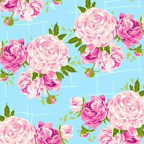 Peonies_blue_background