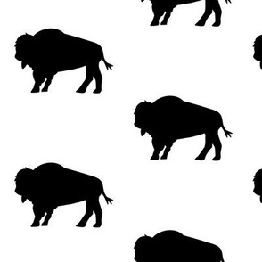 Bison Herd Black and White
