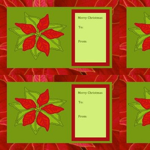 christmas-poinsettia_2-ed