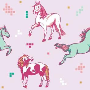 Chincoteague Horses