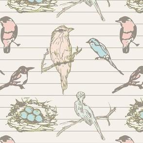 Aviary Pastel