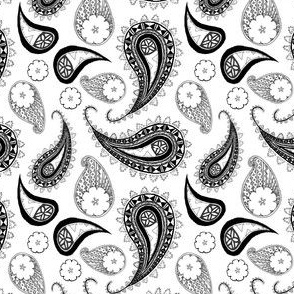 Paisley Repeat Black and White